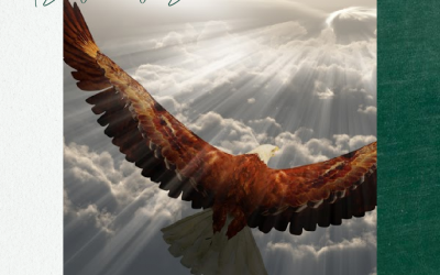 It's Time To Exercise Your Wings and SOAR!